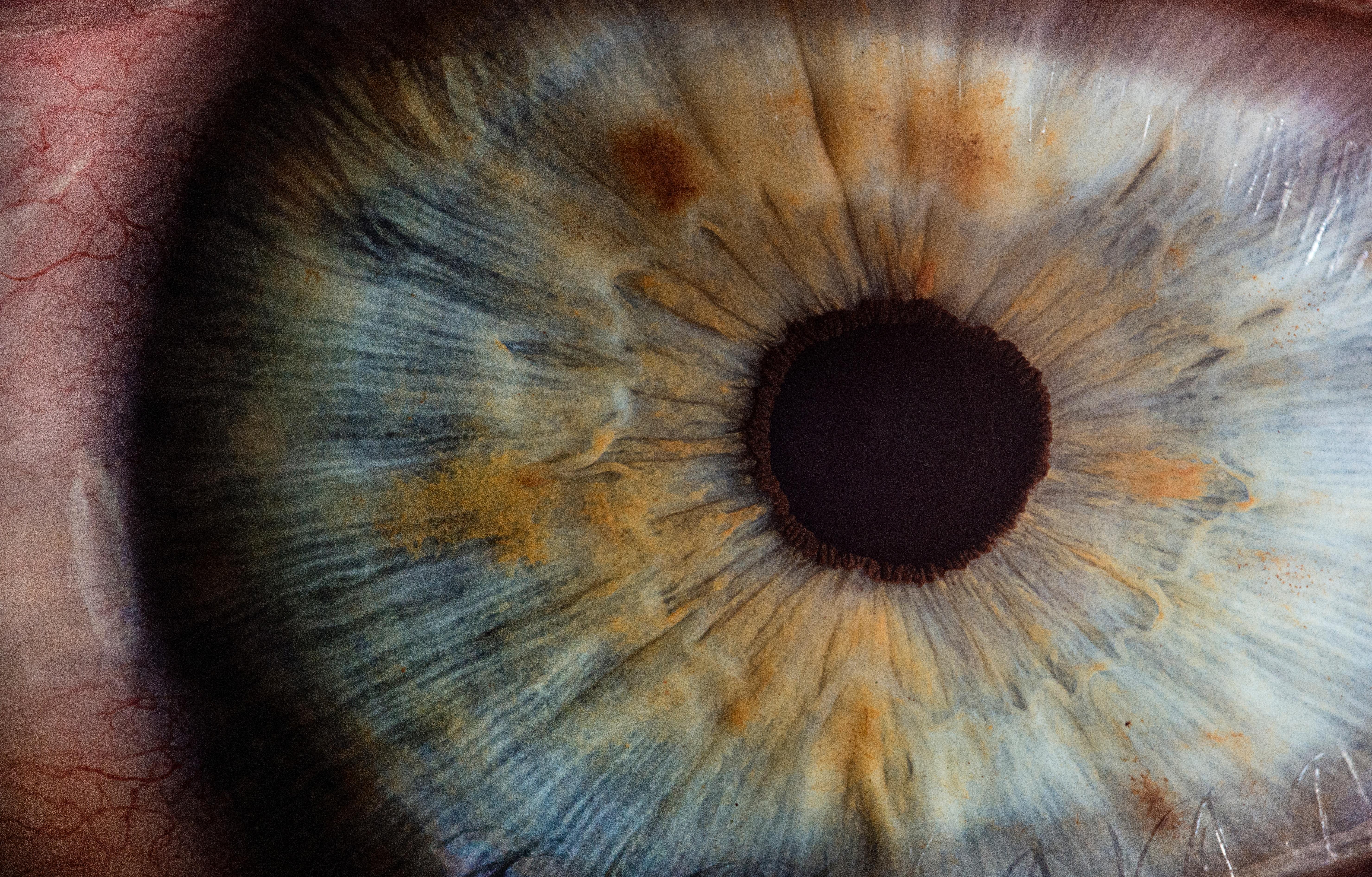 Meilenstein und Hoffnung:  Erste zugelassene Gentherapie gegen frühkindliche Erblindung in München