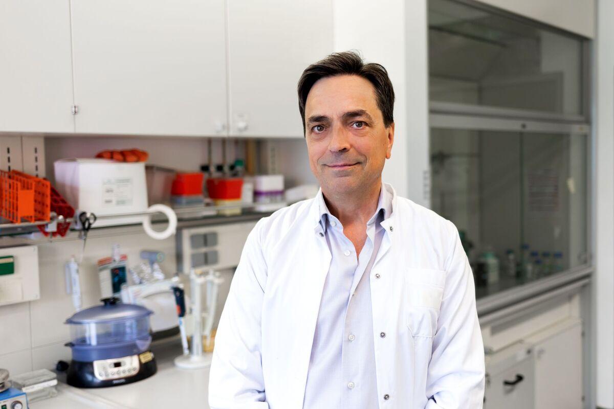 Gentherapie mit Nanopartikeln schützt vor Zelltod in der Retina