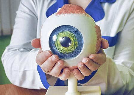 eyefox-opthalmologie-weiterbildung-facharzt (6).jpg (43 KB)