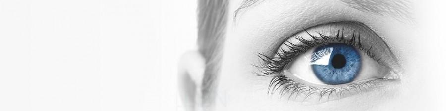 Bild: EYESFIRST.EU Index auf Eyefox.com